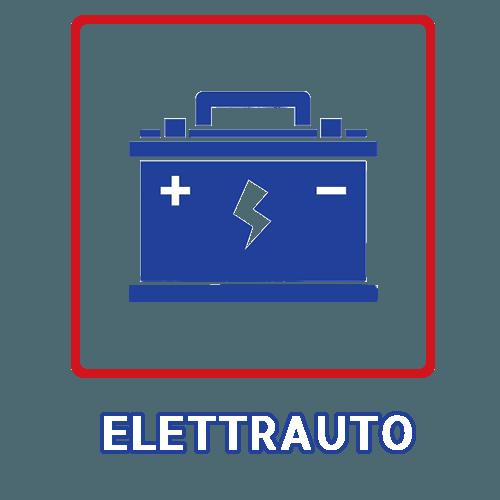 elettrauto_bizioli